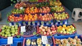 Mevsimi olmayan meyve nerede bulunur
